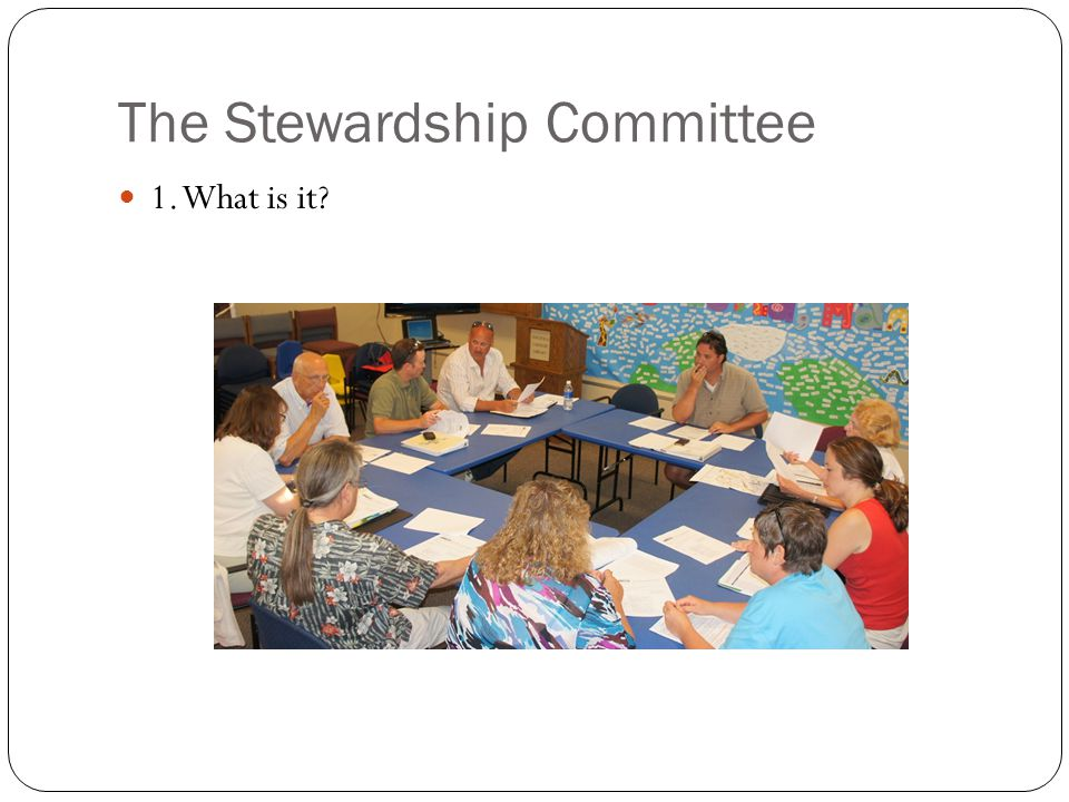 The Stewardship Committee 1. What is it?