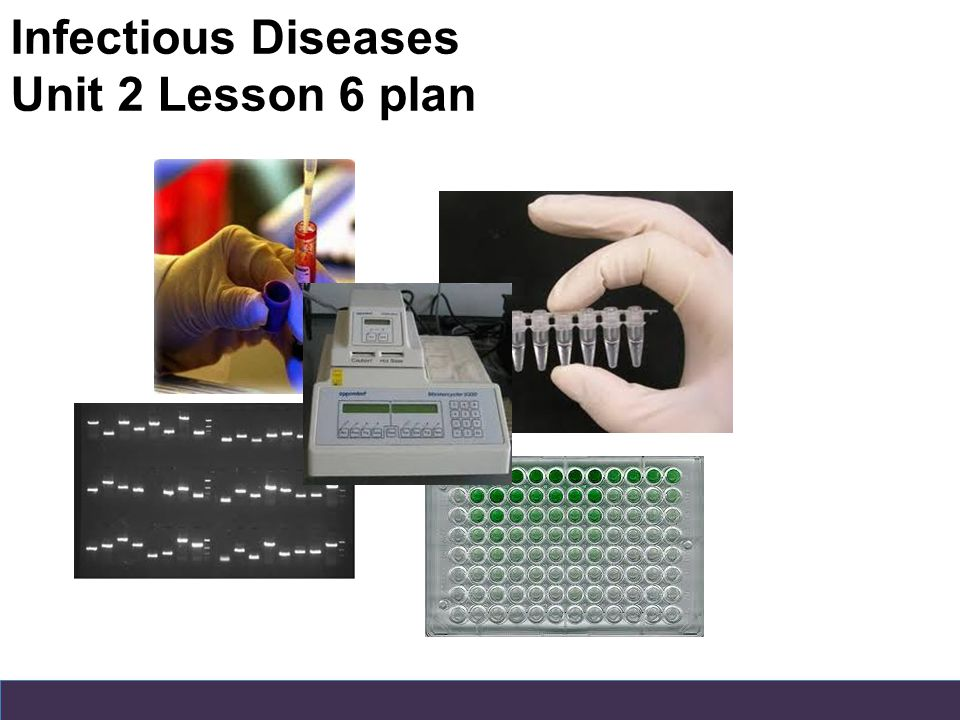Infectious Diseases Unit 2 Lesson 6 plan