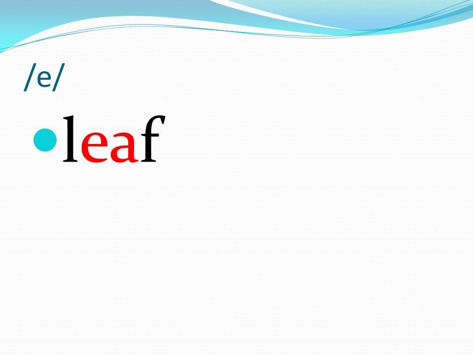 /e/ leaf