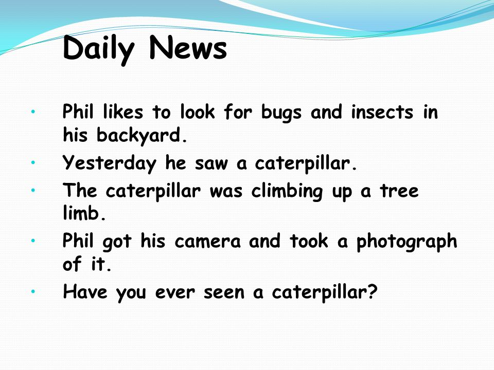Daily News Phil likes to look for bugs and insects in his backyard.