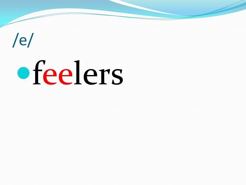 /e/ feelers