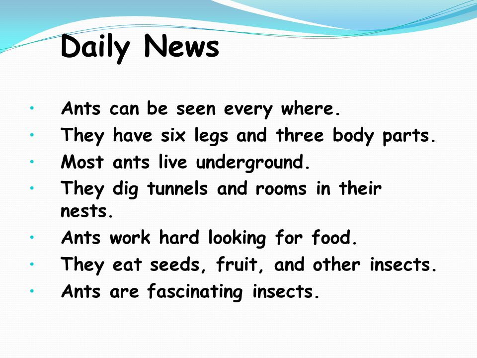 Daily News Ants can be seen every where. They have six legs and three body parts.