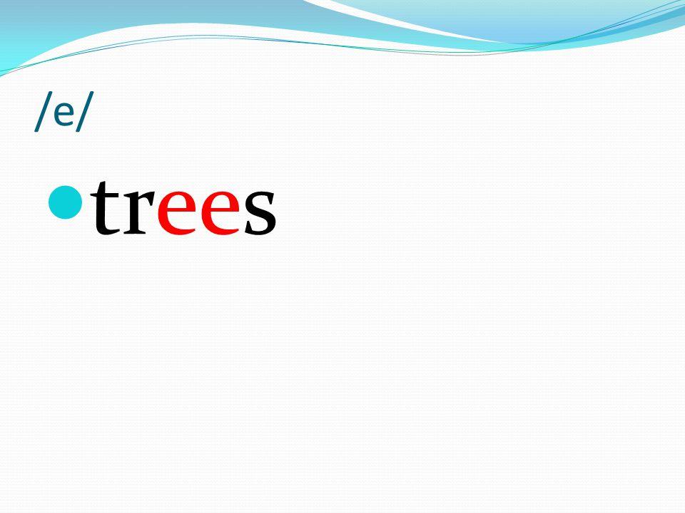 /e/ trees