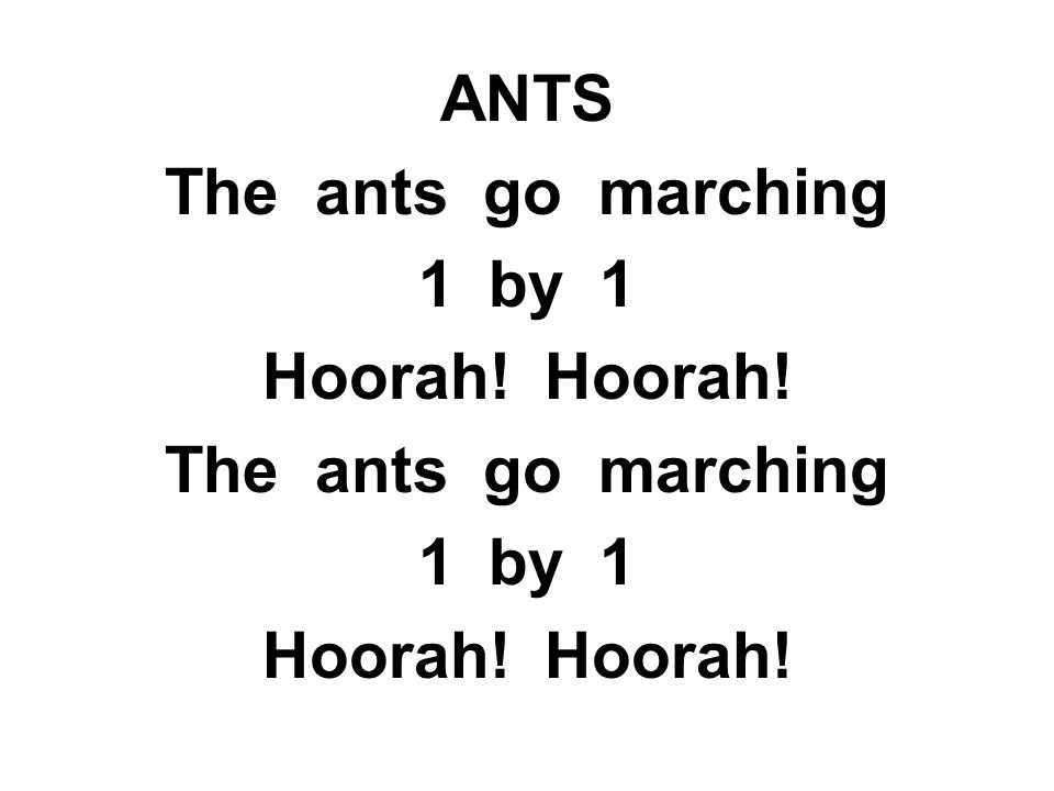 ANTS The ants go marching 1by 1 Hoorah! The ants go marching 1by 1 Hoorah!