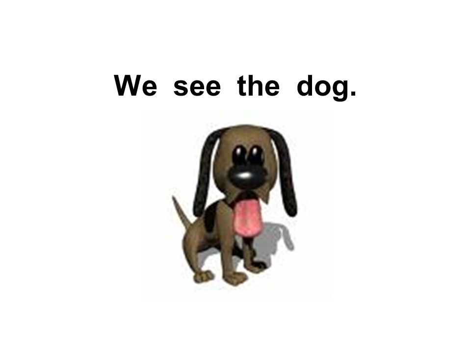 We see the dog.