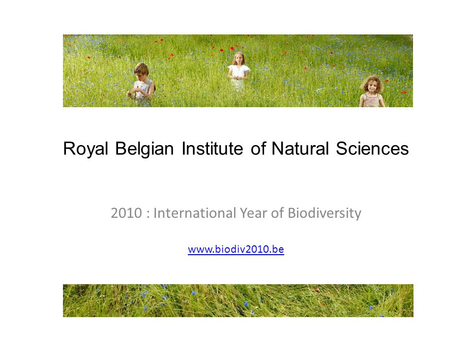 Royal Belgian Institute of Natural Sciences 2010 : International Year of Biodiversity www.biodiv2010.be