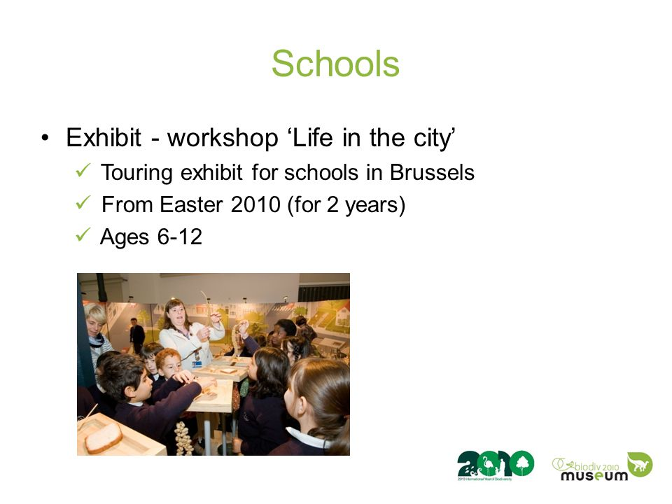 Schools Exhibit - workshop 'Life in the city' Touring exhibit for schools in Brussels From Easter 2010 (for 2 years) Ages 6-12