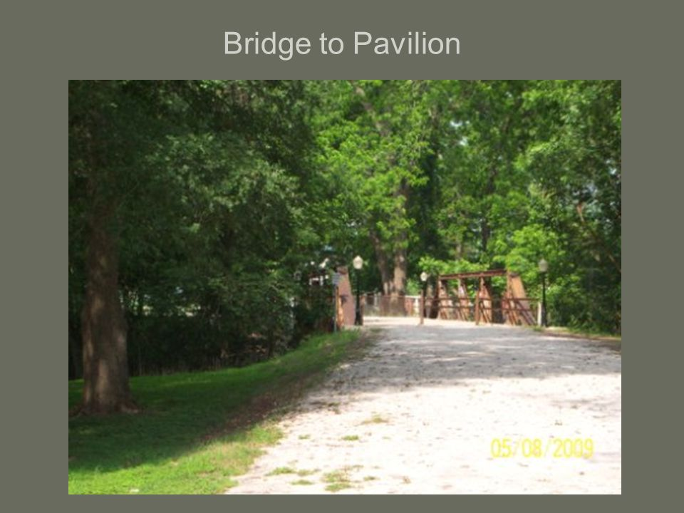 Bridge to Pavilion