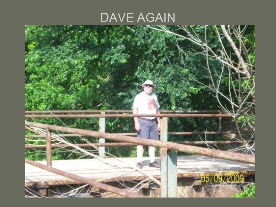 DAVE AGAIN