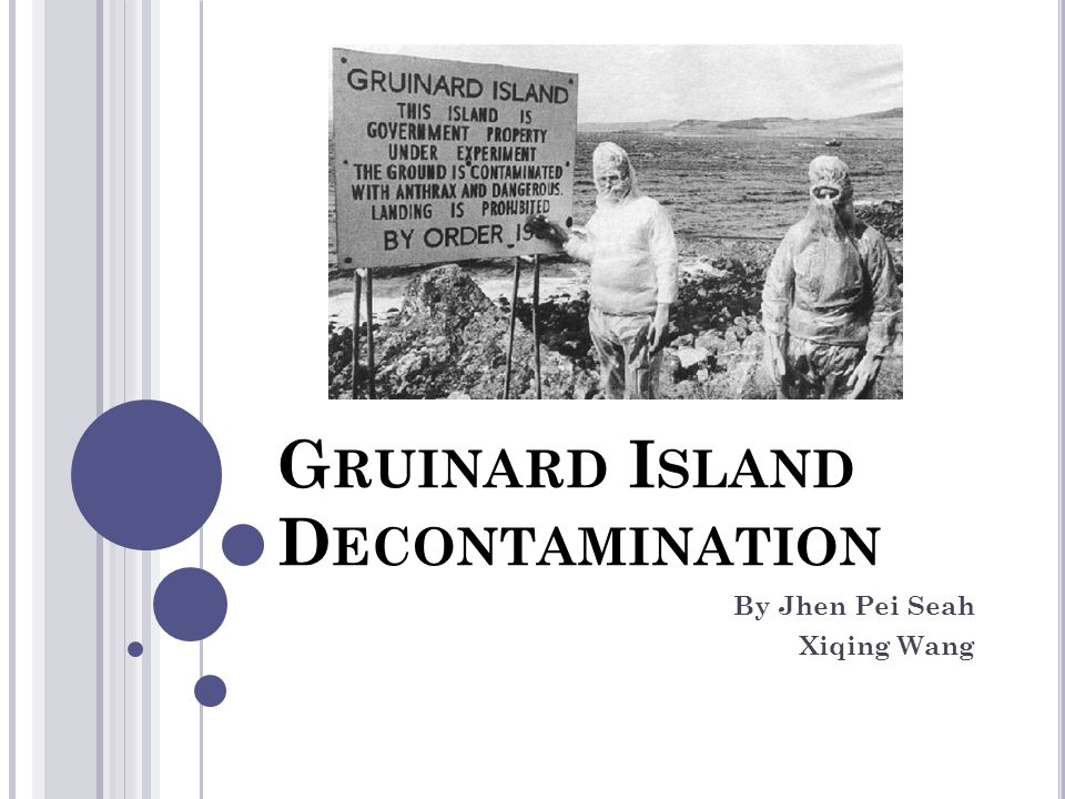 G RUINARD I SLAND D ECONTAMINATION By Jhen Pei Seah Xiqing Wang