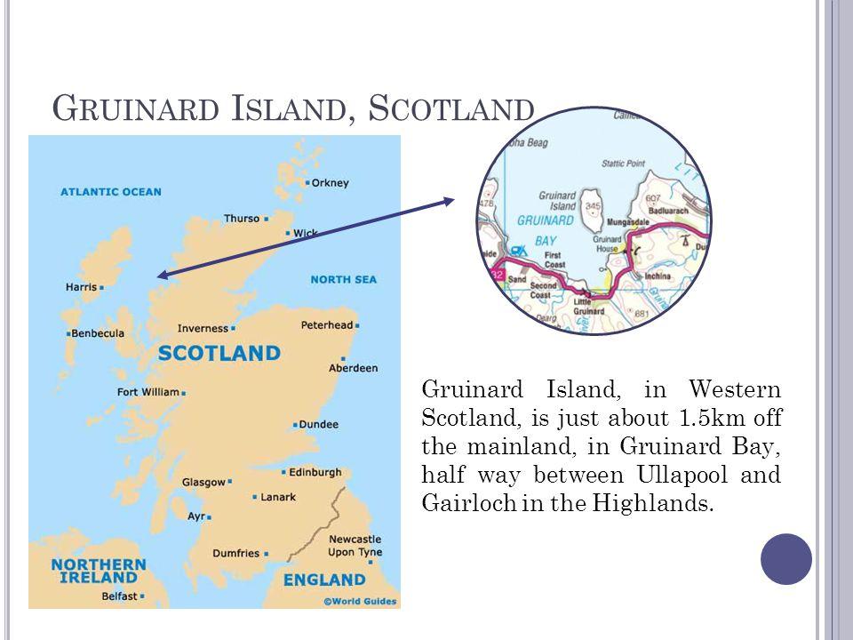 G RUINARD I SLAND, S COTLAND Gruinard Island, in Western Scotland, is just about 1.5km off the mainland, in Gruinard Bay, half way between Ullapool an