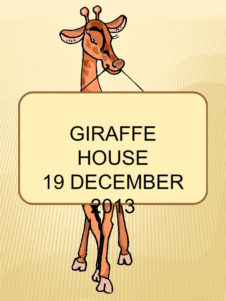 GIRAFFE HOUSE 19 DECEMBER 2013
