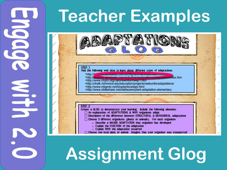 Teacher Examples Assignment Glog