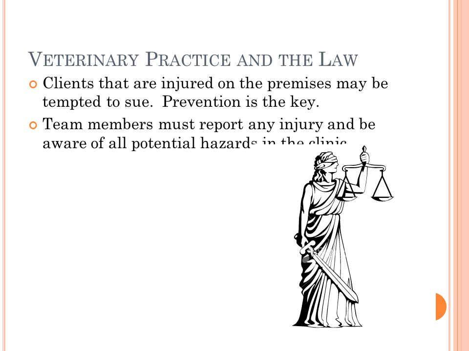 V ETERINARY P RACTICE AND THE L AW Clients that are injured on the premises may be tempted to sue.