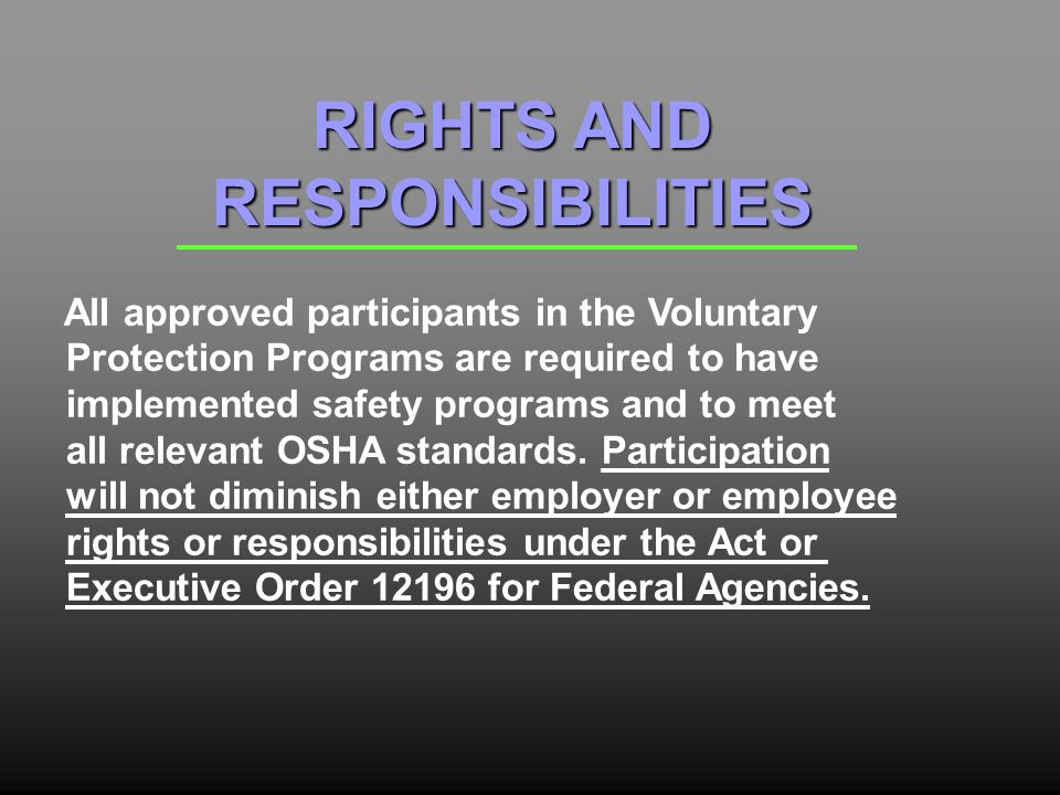 All approved participants in the Voluntary Protection Programs are required to have implemented safety programs and to meet all relevant OSHA standards.