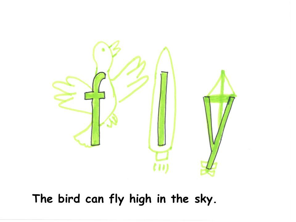 The bird can fly high in the sky.
