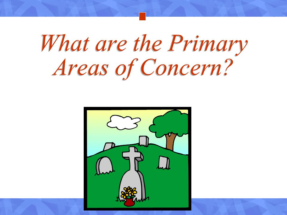 What are the Primary Areas of Concern?
