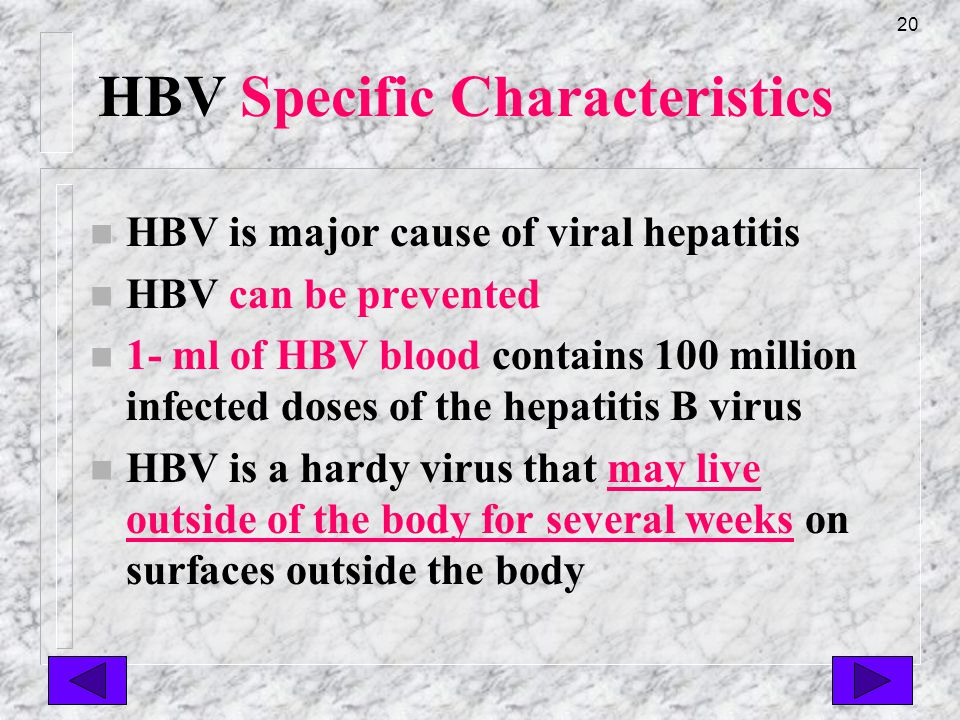 19 HBV Specific Characteristics n HBV can lead to acute/chronic cirrhosis of liver & possible liver cancer sick healthy