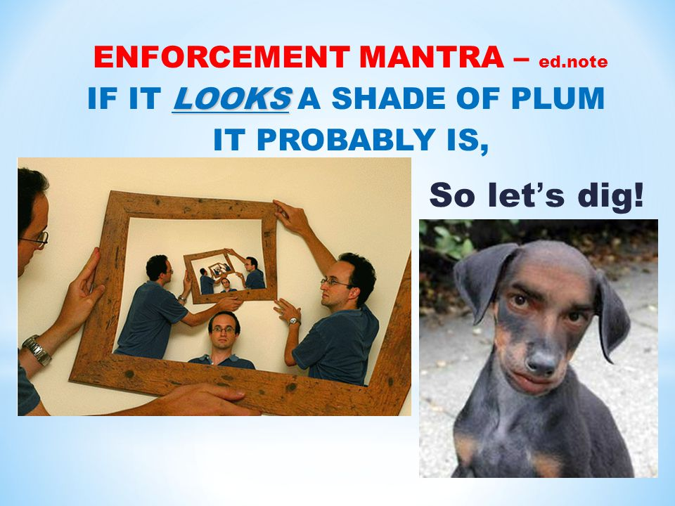 ENFORCEMENT MANTRA – ed.note LOOKS IF IT LOOKS A SHADE OF PLUM IT PROBABLY IS, So let's dig!