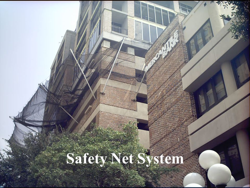 Safety Net System