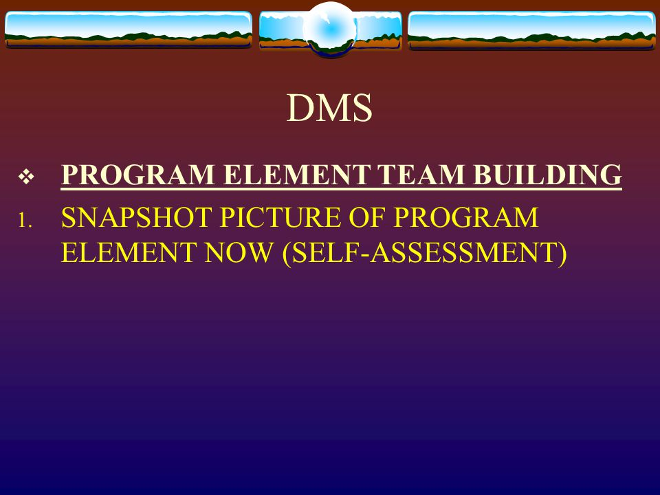 DMS  PROGRAM ELEMENT TEAM BUILDING 1. SNAPSHOT PICTURE OF PROGRAM ELEMENT NOW (SELF-ASSESSMENT)