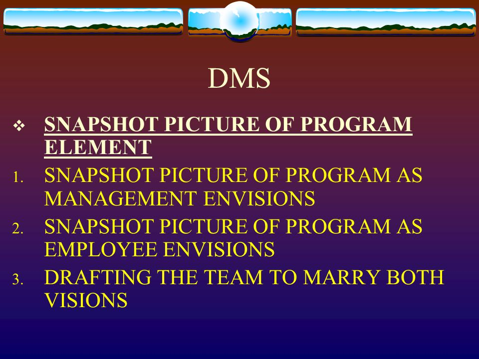 DMS  SNAPSHOT PICTURE OF PROGRAM ELEMENT 1. SNAPSHOT PICTURE OF PROGRAM AS MANAGEMENT ENVISIONS 2.