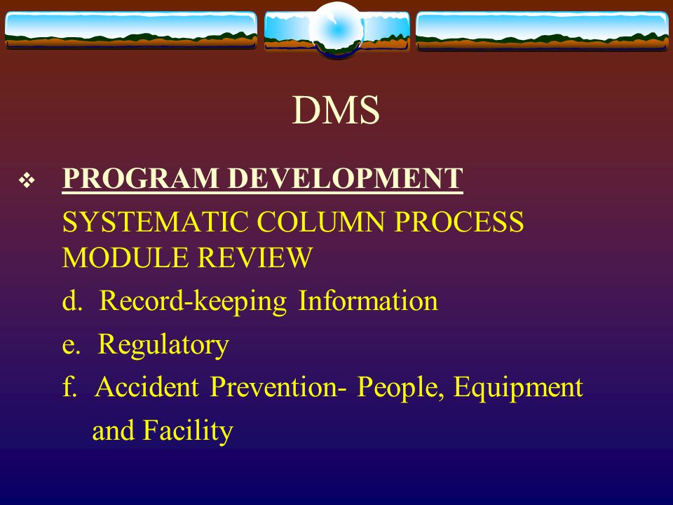 DMS  PROGRAM DEVELOPMENT SYSTEMATIC COLUMN PROCESS MODULE REVIEW d. Record-keeping Information e. Regulatory f. Accident Prevention- People, Equipmen