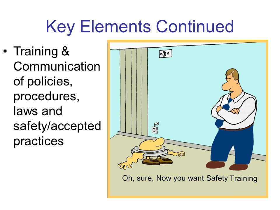 Key Elements Continued Training & Communication of policies, procedures, laws and safety/accepted practices