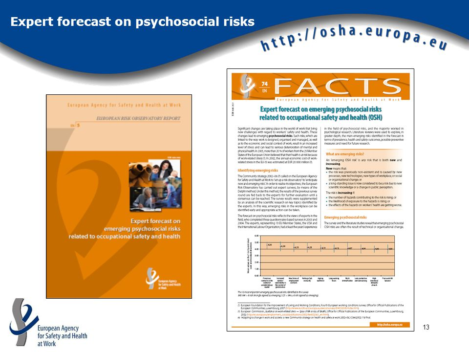 13 Expert forecast on psychosocial risks