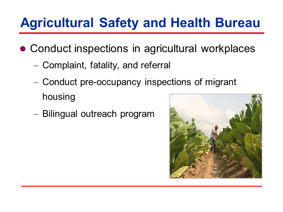 Agricultural Safety and Health Bureau Conduct inspections in agricultural workplaces  Complaint, fatality, and referral  Conduct pre-occupancy inspections of migrant housing  Bilingual outreach program