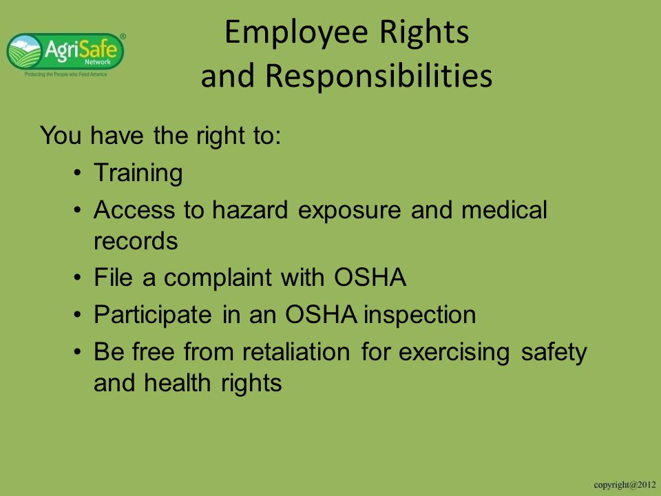 Hog case study response Does not meet Agriculture exemption OSHA has ability to follow general enforcement activities – No family members – More than 10 employees – Temporary labor camp in past 12 months