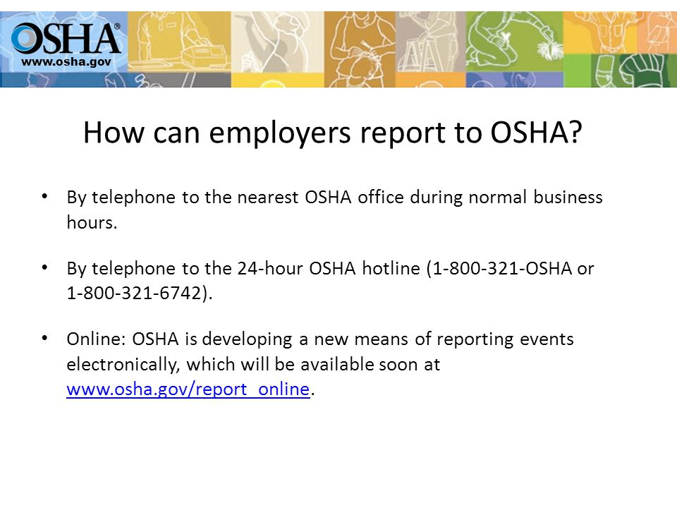 By telephone to the nearest OSHA office during normal business hours.
