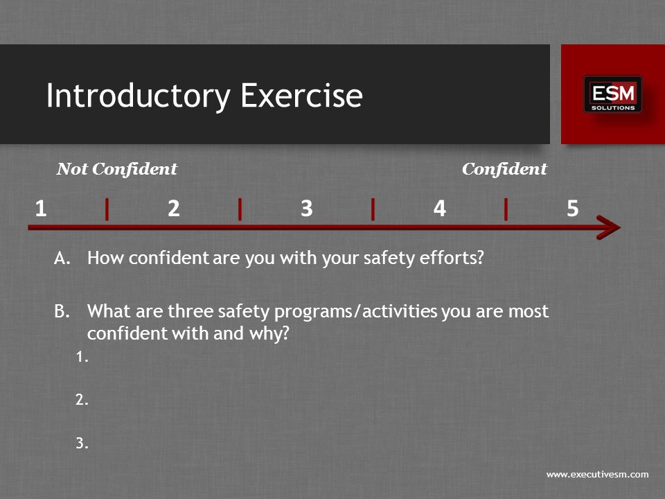 www.executivesm.com Introductory Exercise A.How confident are you with your safety efforts.