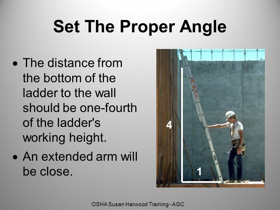 OSHA Susan Harwood Training - AGC Set The Proper Angle  The distance from the bottom of the ladder to the wall should be one-fourth of the ladder s working height.