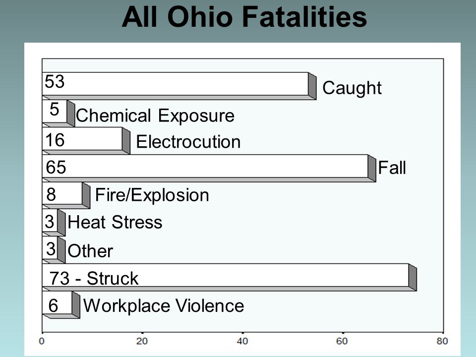 Caught Chemical Exposure Fire/Explosion Workplace Violence 73 - Struck Other Heat Stress Fall Electrocution 53 16 5 6 65 8 3 3