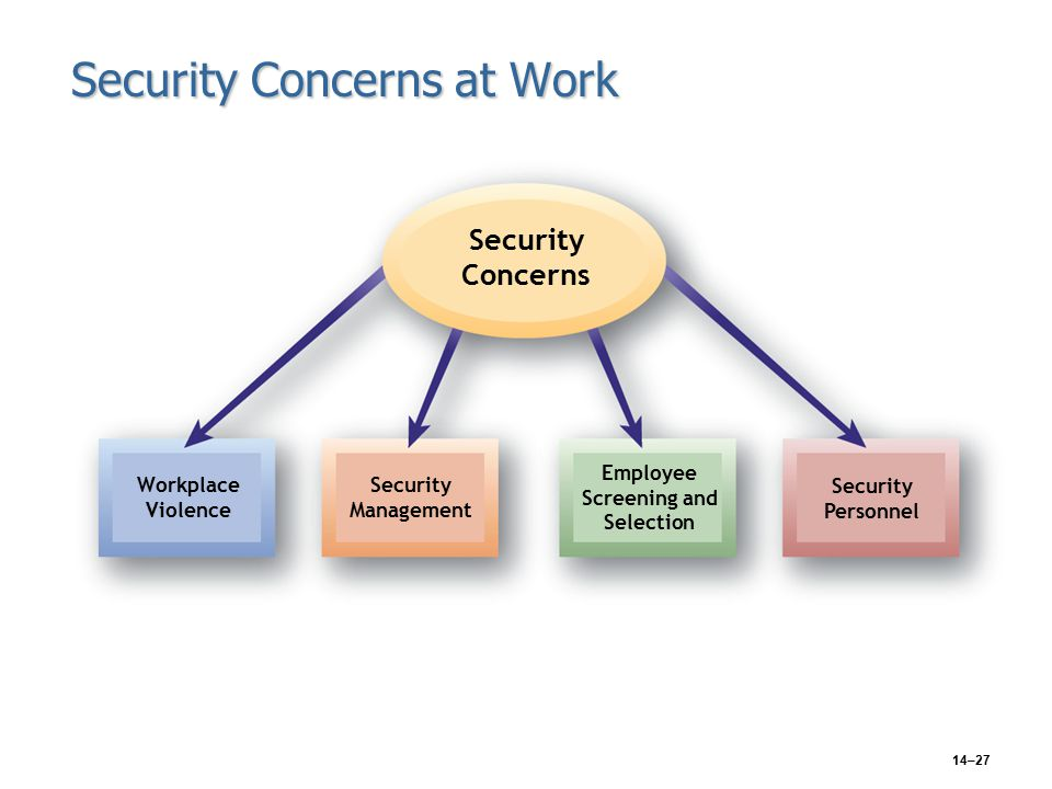 14–27 Security Concerns at Work Security Concerns Workplace Violence Security Management Employee Screening and Selection Security Personnel