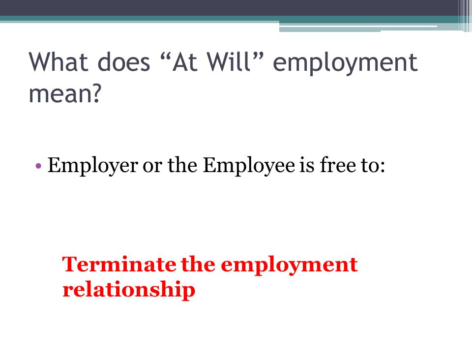 What does At Will employment mean.