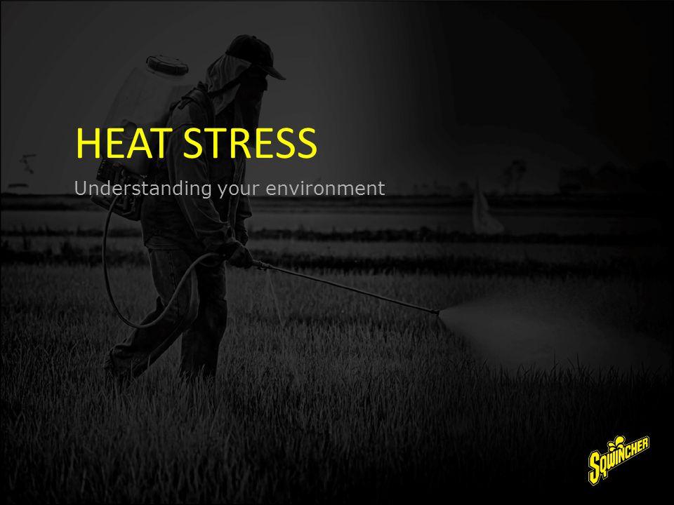 HEAT STRESS Understanding your environment