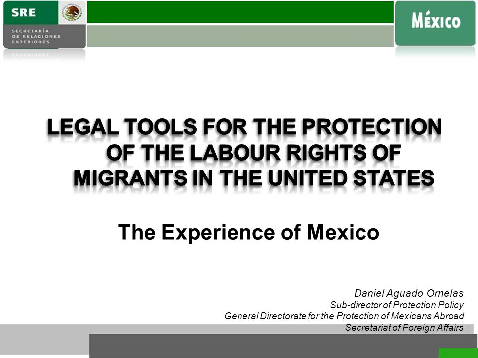 Daniel Aguado Ornelas Sub-director of Protection Policy General Directorate for the Protection of Mexicans Abroad Secretariat of Foreign Affairs The Experience of Mexico