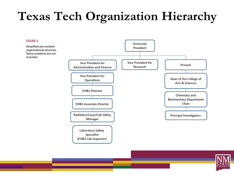 Texas Tech Organization Hierarchy