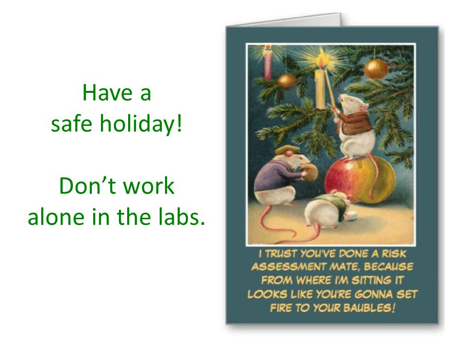 Have a safe holiday! Don't work alone in the labs.