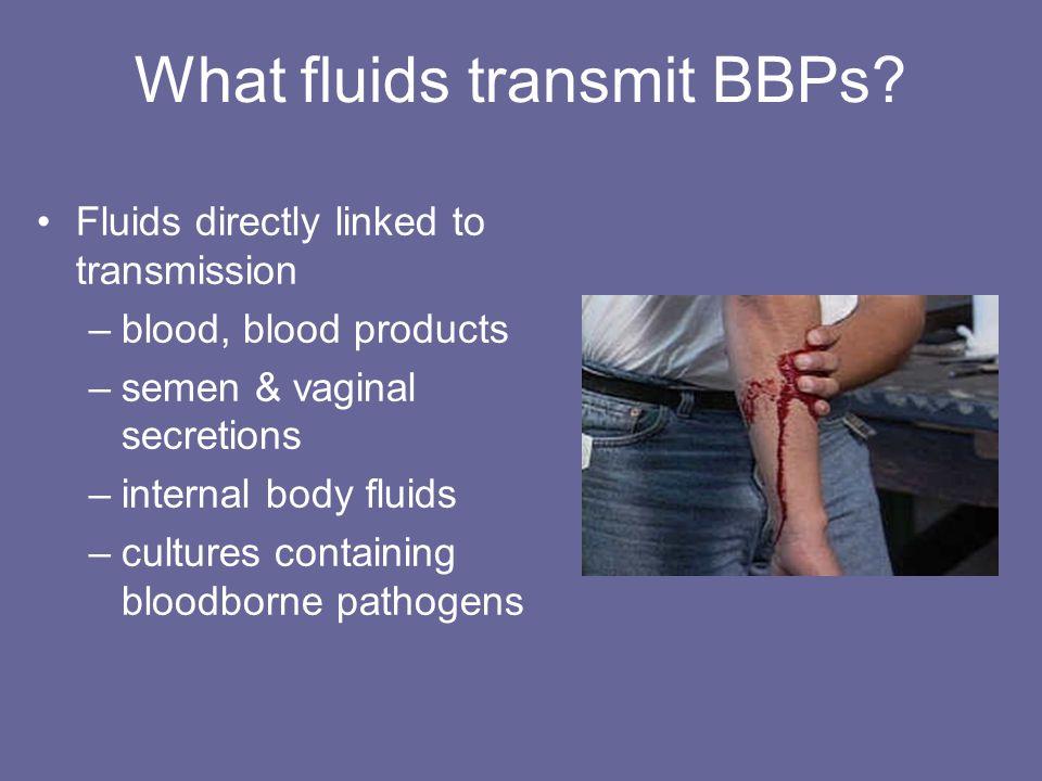 What fluids transmit BBPs? Fluids directly linked to transmission –blood, blood products –semen & vaginal secretions –internal body fluids –cultures c