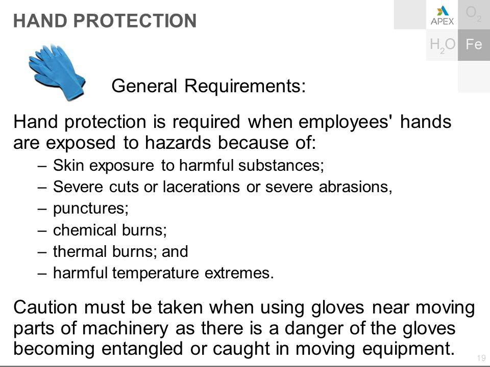 HAND PROTECTION General Requirements: Hand protection is required when employees' hands are exposed to hazards because of: –Skin exposure to harmful s