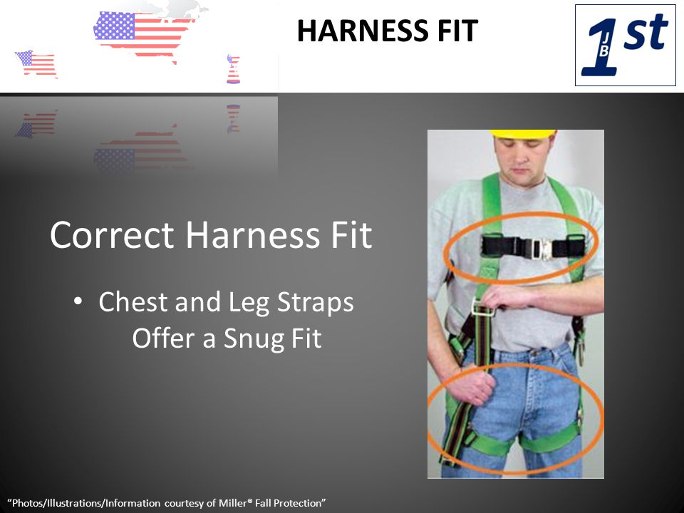 HARNESS FIT Chest and Leg Straps Offer a Snug Fit Photos/Illustrations/Information courtesy of Miller® Fall Protection Correct Harness Fit