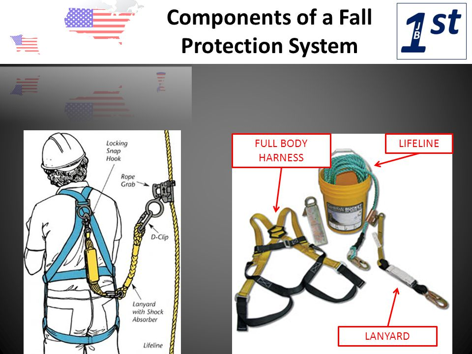 Components of a Fall Protection System FULL BODY HARNESS LANYARD LIFELINE