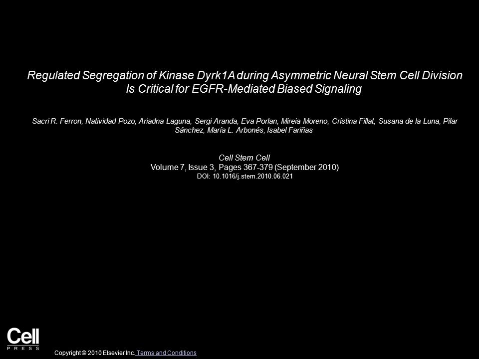 Regulated Segregation of Kinase Dyrk1A during Asymmetric Neural Stem Cell Division Is Critical for EGFR-Mediated Biased Signaling Sacri R.