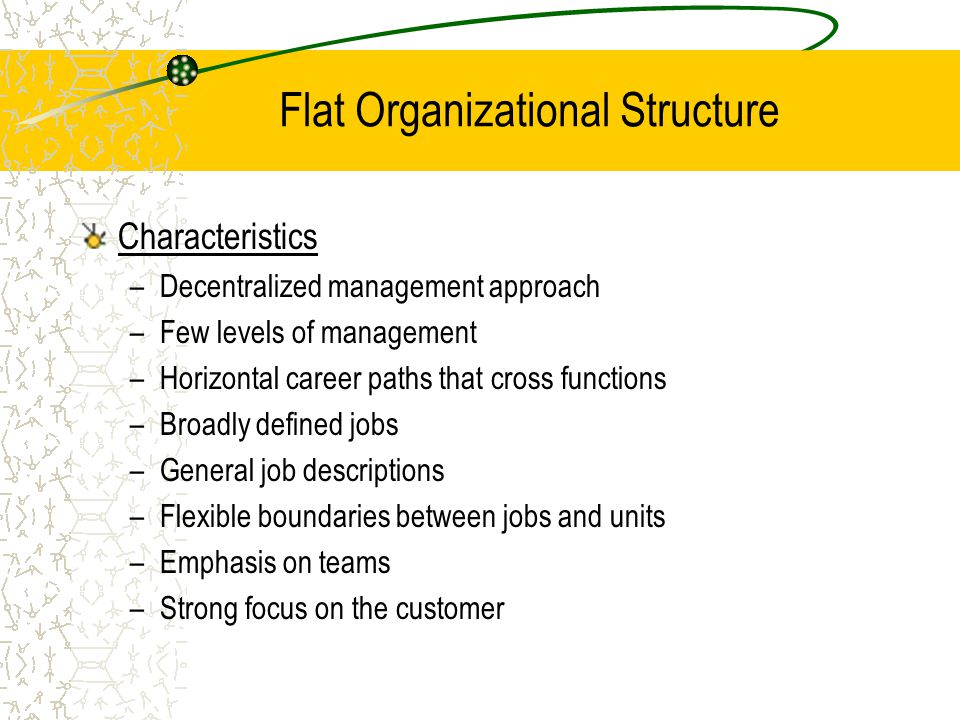 Flat Organizational Structure Characteristics –Decentralized management approach –Few levels of management –Horizontal career paths that cross functions –Broadly defined jobs –General job descriptions –Flexible boundaries between jobs and units –Emphasis on teams –Strong focus on the customer