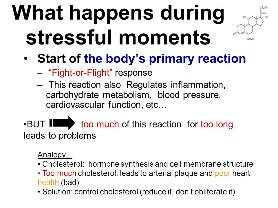 What happens during stressful moments Start of the body's primary reaction – Fight-or-Flight response – This reaction also Regulates inflammation, carbohydrate metabolism, blood pressure, cardiovascular function, etc… BUT too much of this reaction for too long leads to problems Analogy...