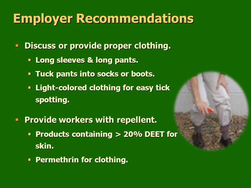 Employer Recommendations  Discuss or provide proper clothing.