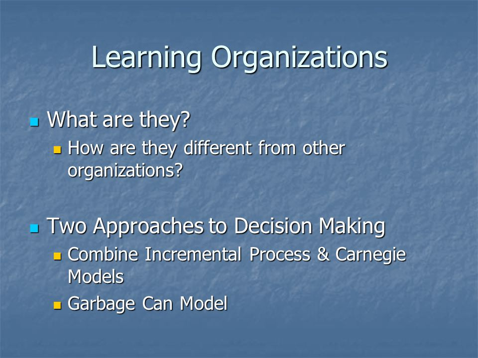 Learning Organizations What are they. What are they.